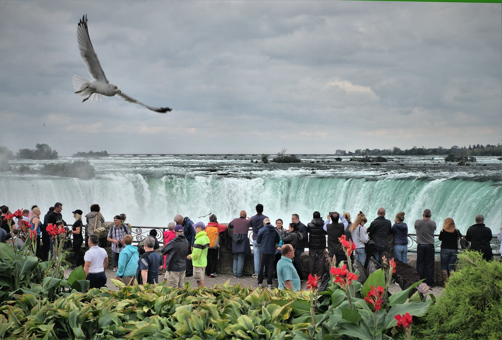 people taking picture of waterfalls under cloudy sky