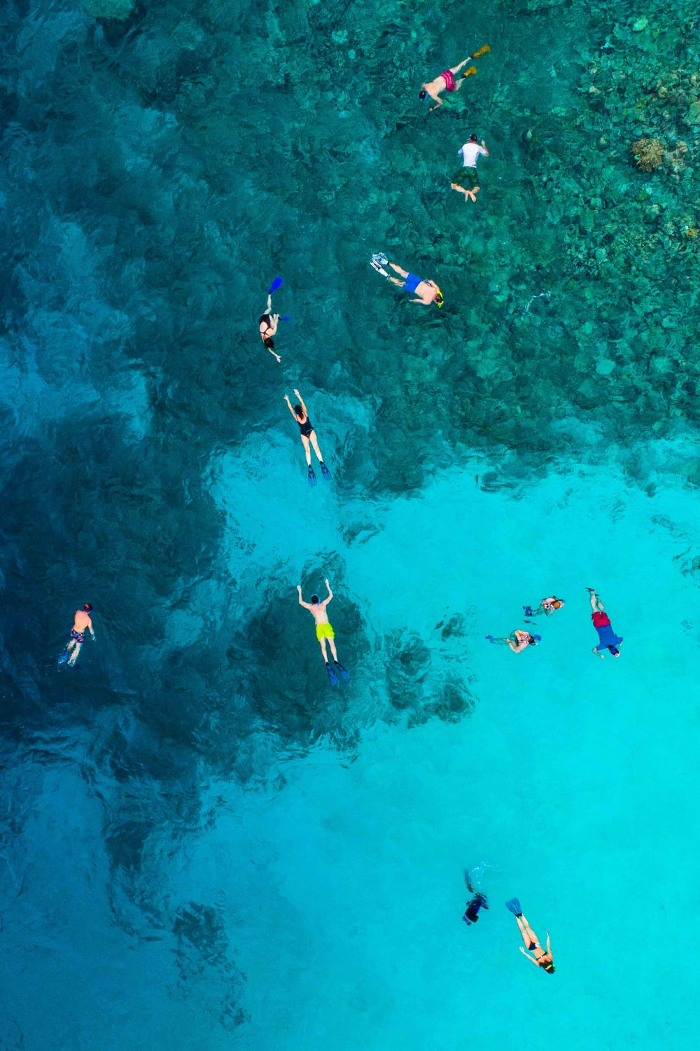 aerial view photography of people in body of water
