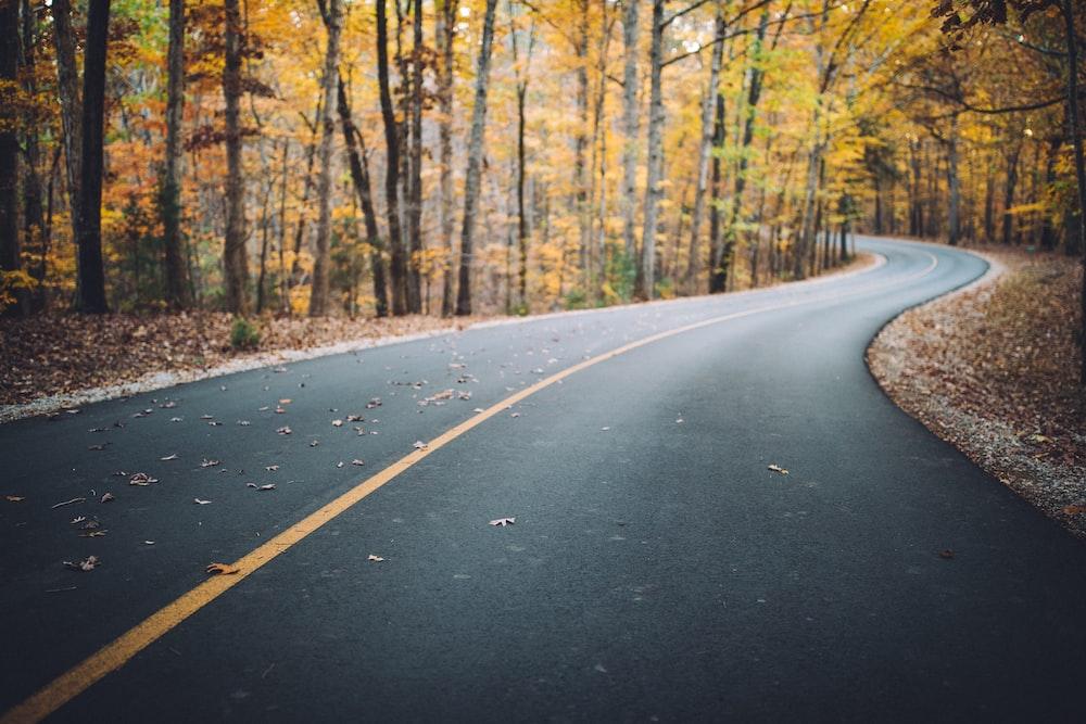 gray top road
