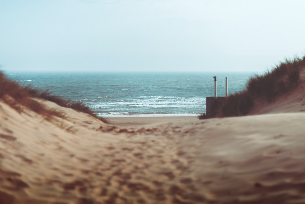 shallow focus photography of brown sand and sea
