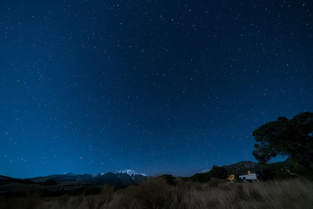 blue starry skies