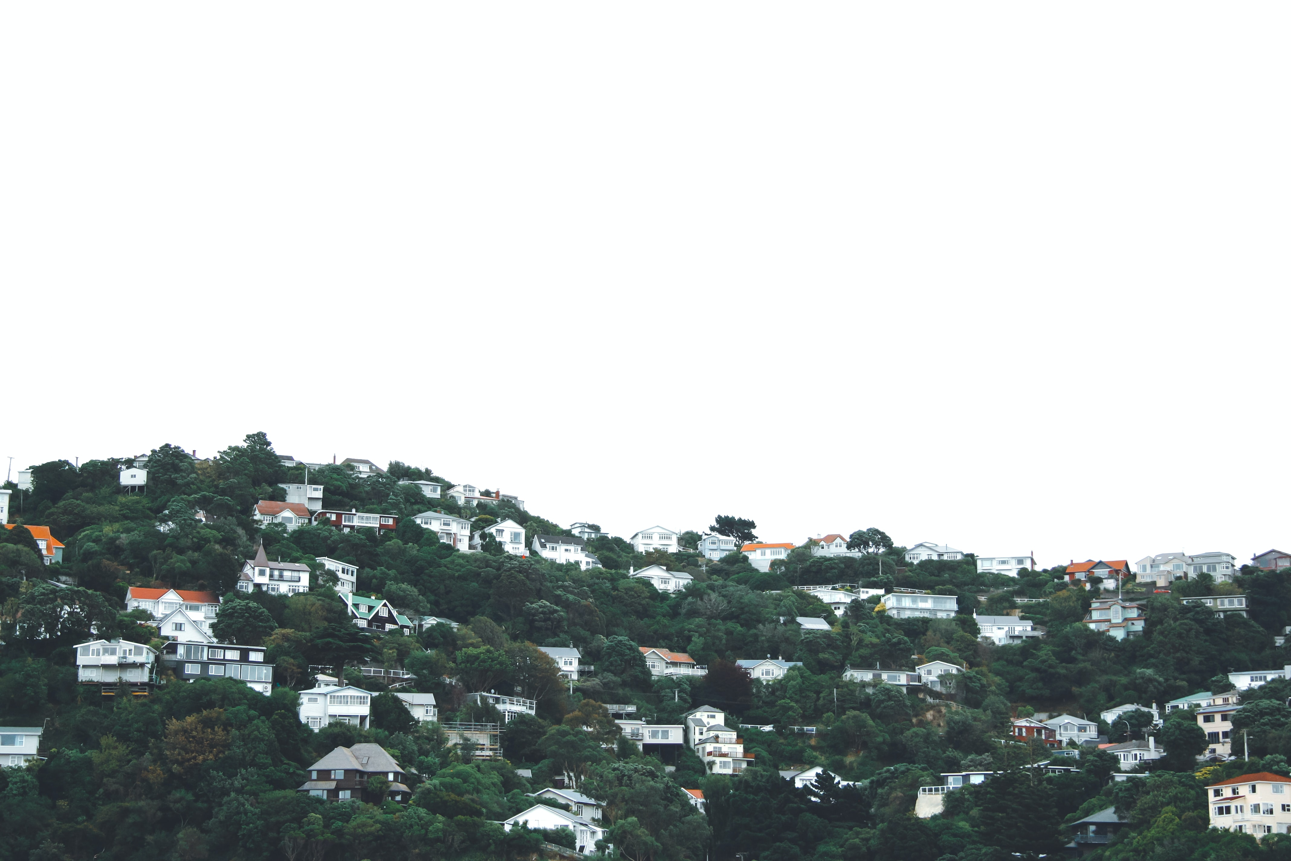 buildings and trees on mountain