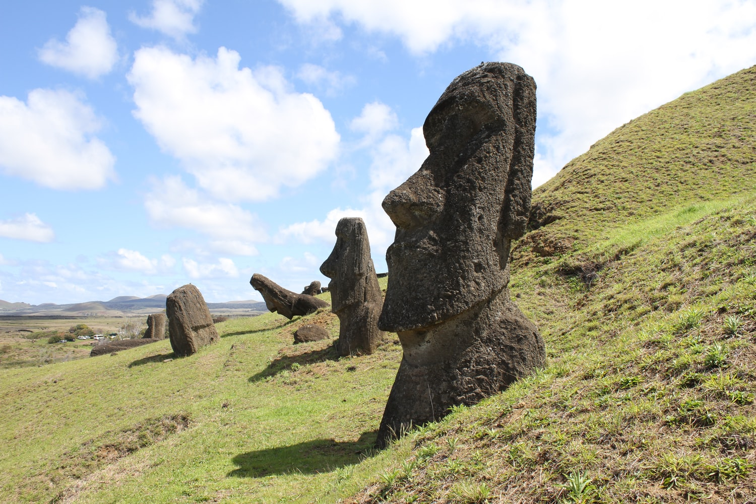 Chile stone heads