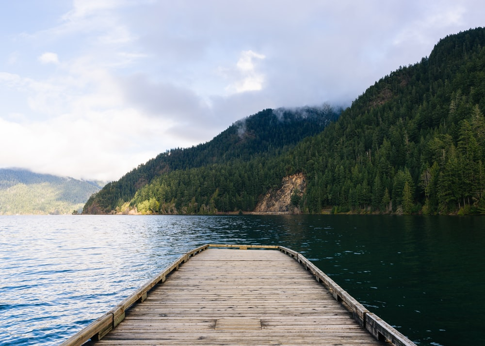 brown wooden dock with island and body of water
