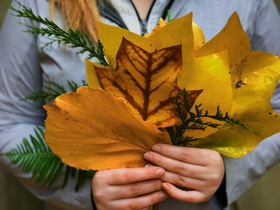 woman holding yellow leaves bouquet teams background