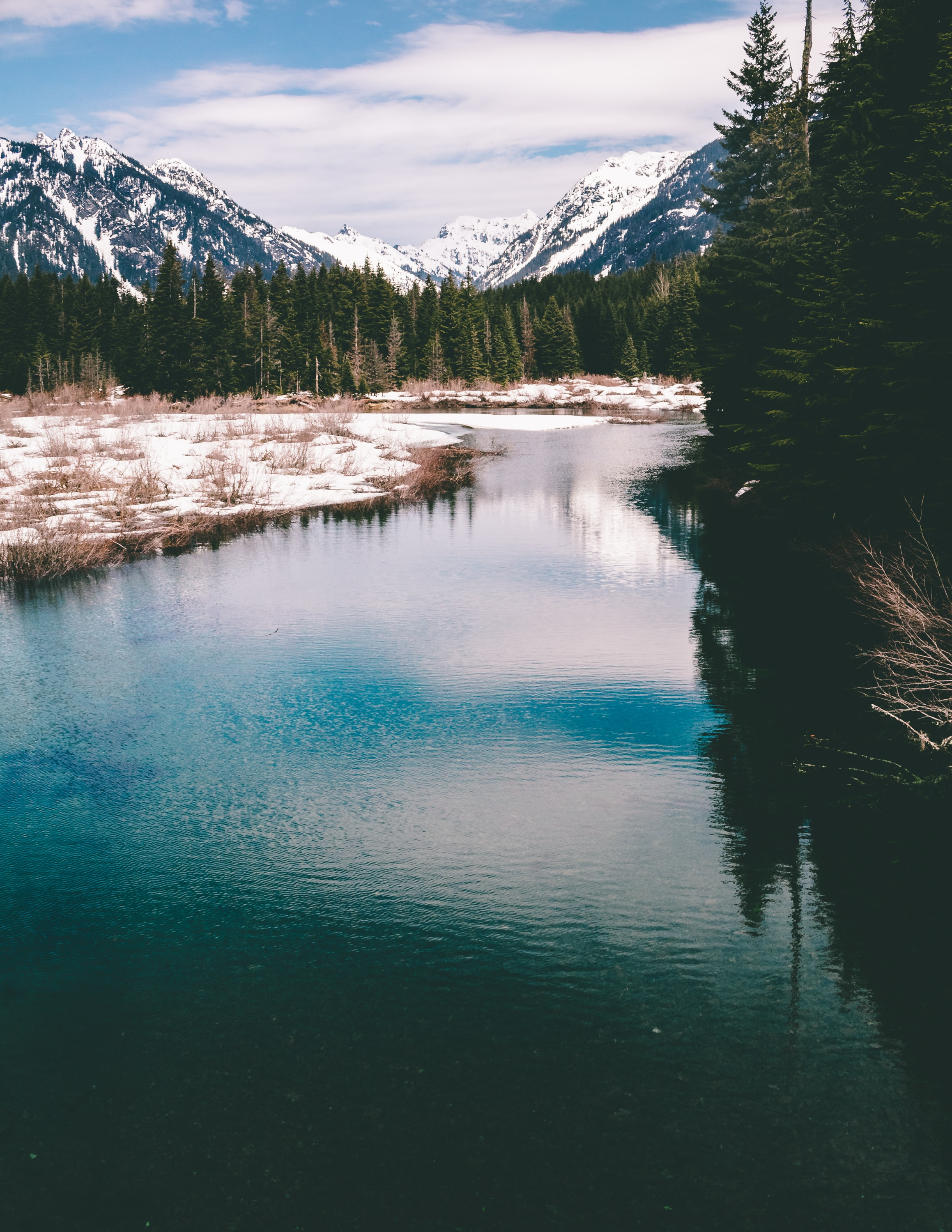 body of water near trees and mountain