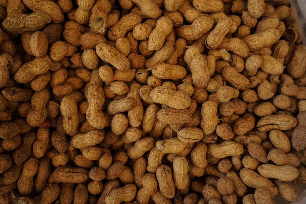 Peanuts are one of the ingredients in dynamite.