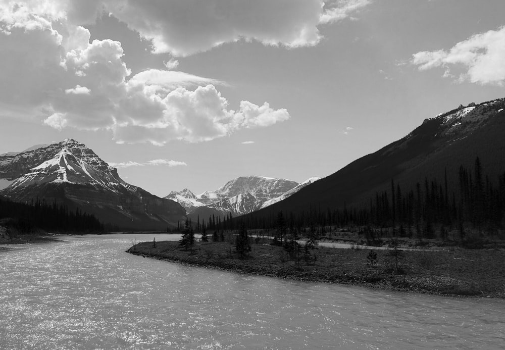 grayscale photo of trees and mountains near body of water