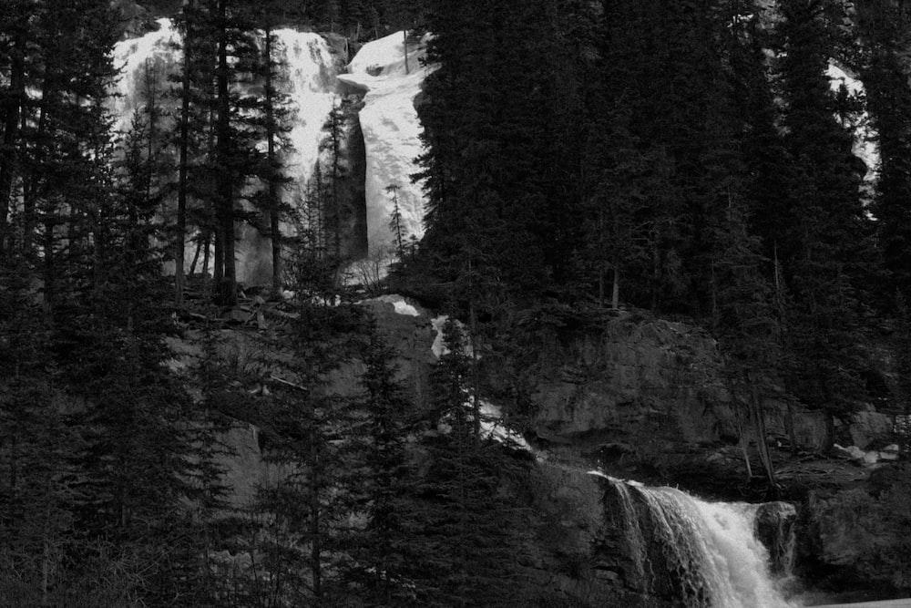 grayscale photo of waterfalls near tree