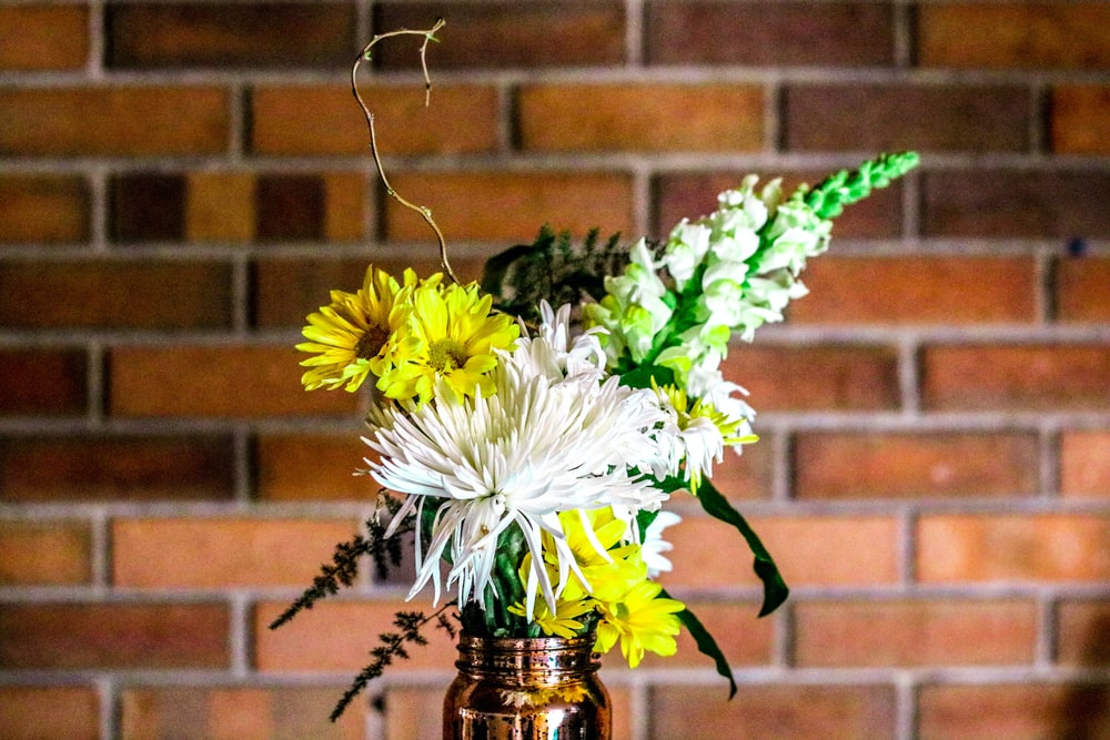 yellow and white flower on vase