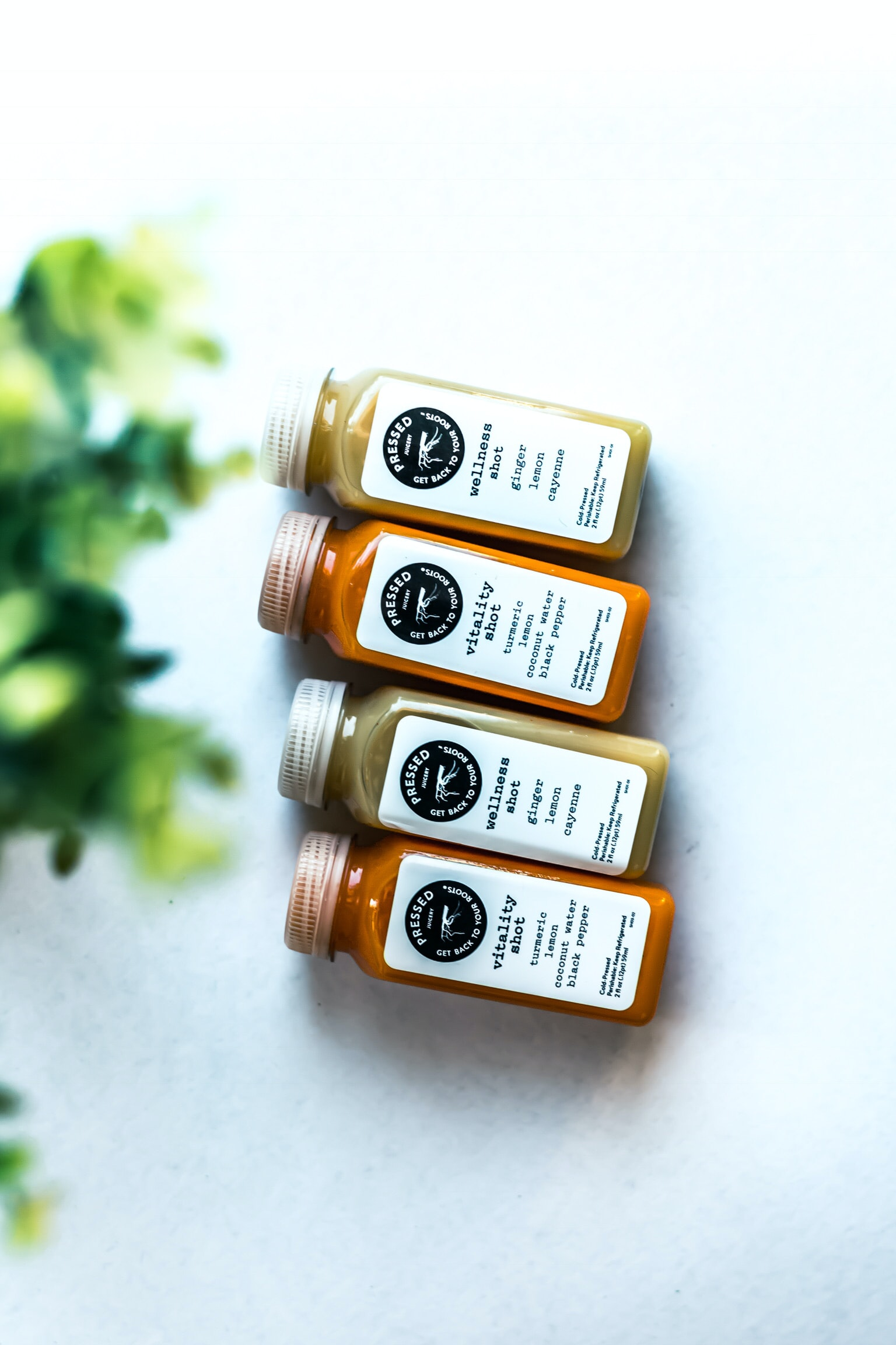 wellness shot and vitality shot glass bottles