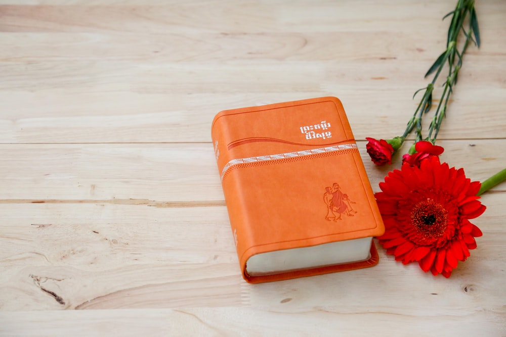 orange covered book near red artificial flower
