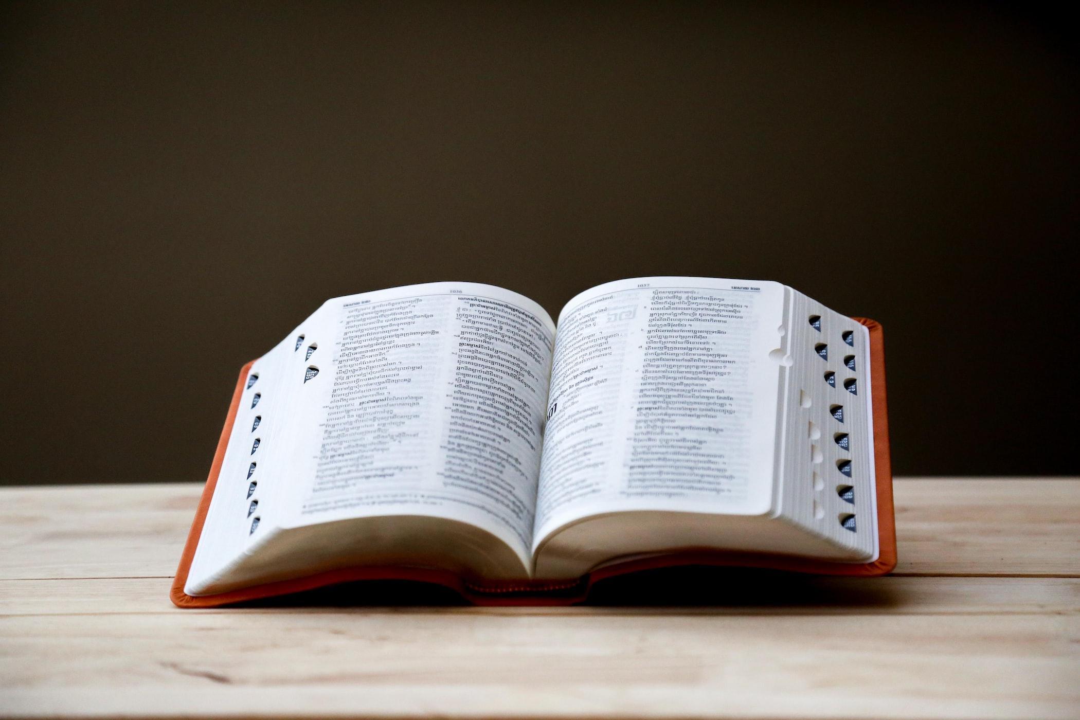 現代文の語彙力を身につける方法『辞書を引いて調べるクセをつける』