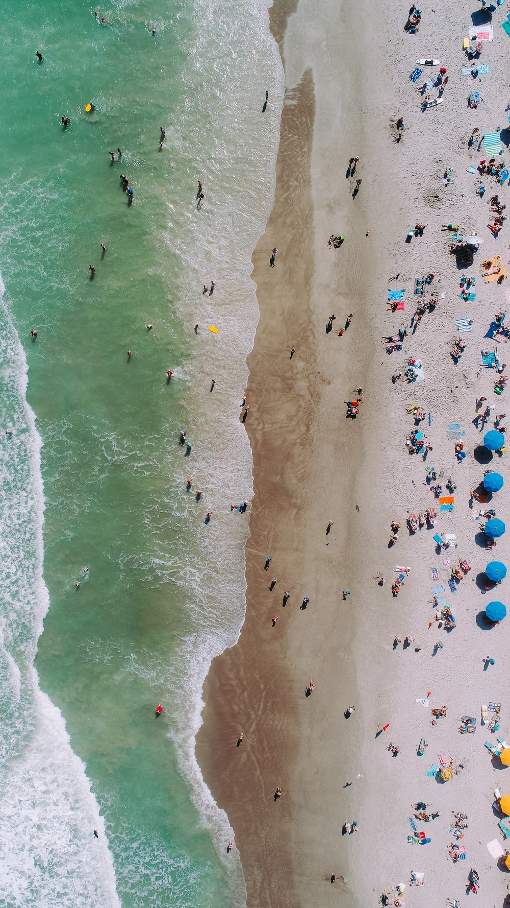 aerial photo of people on seashore during daytime photo