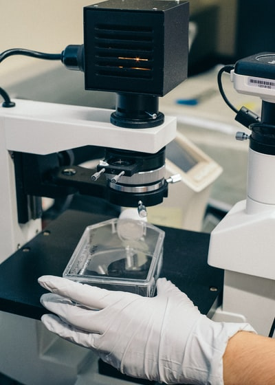 A gloved hand preparing a stem cell culture for analysis.