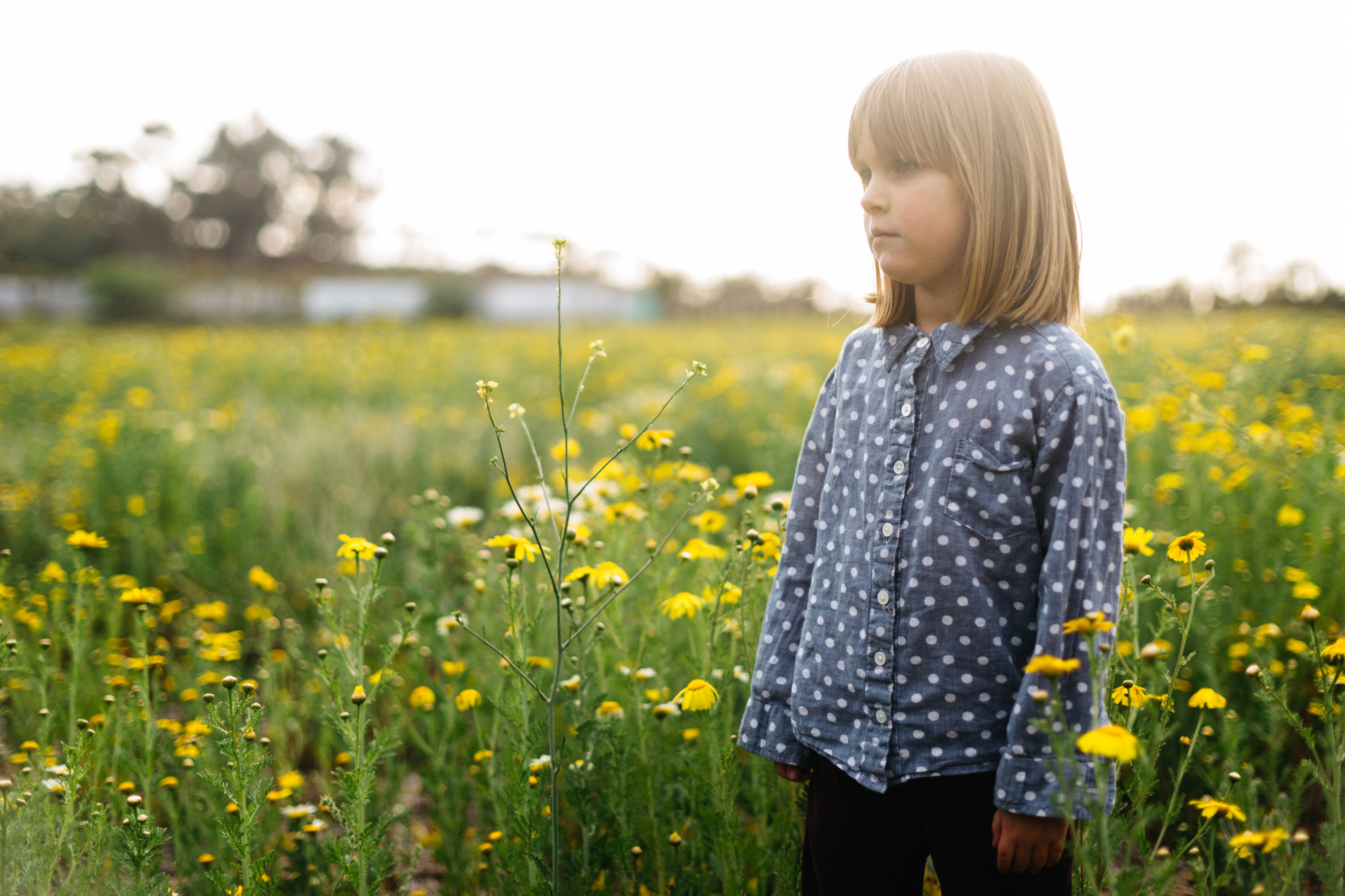 girl standing surrounded by yellow flowers during daytime