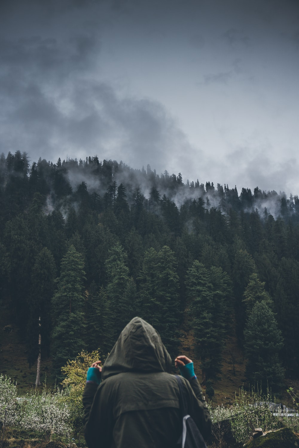 person facing trees under gray clouds
