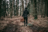 person in black hoodie holding basket in forest during daytime