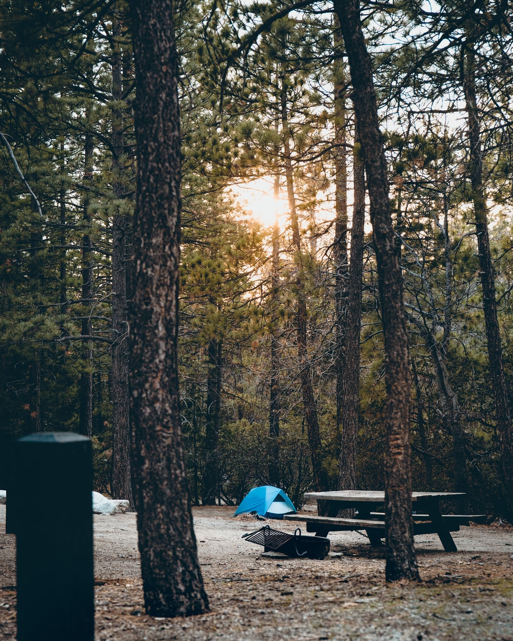 Camping This Weekend | HD photo by Dane Deaner (@danedeaner