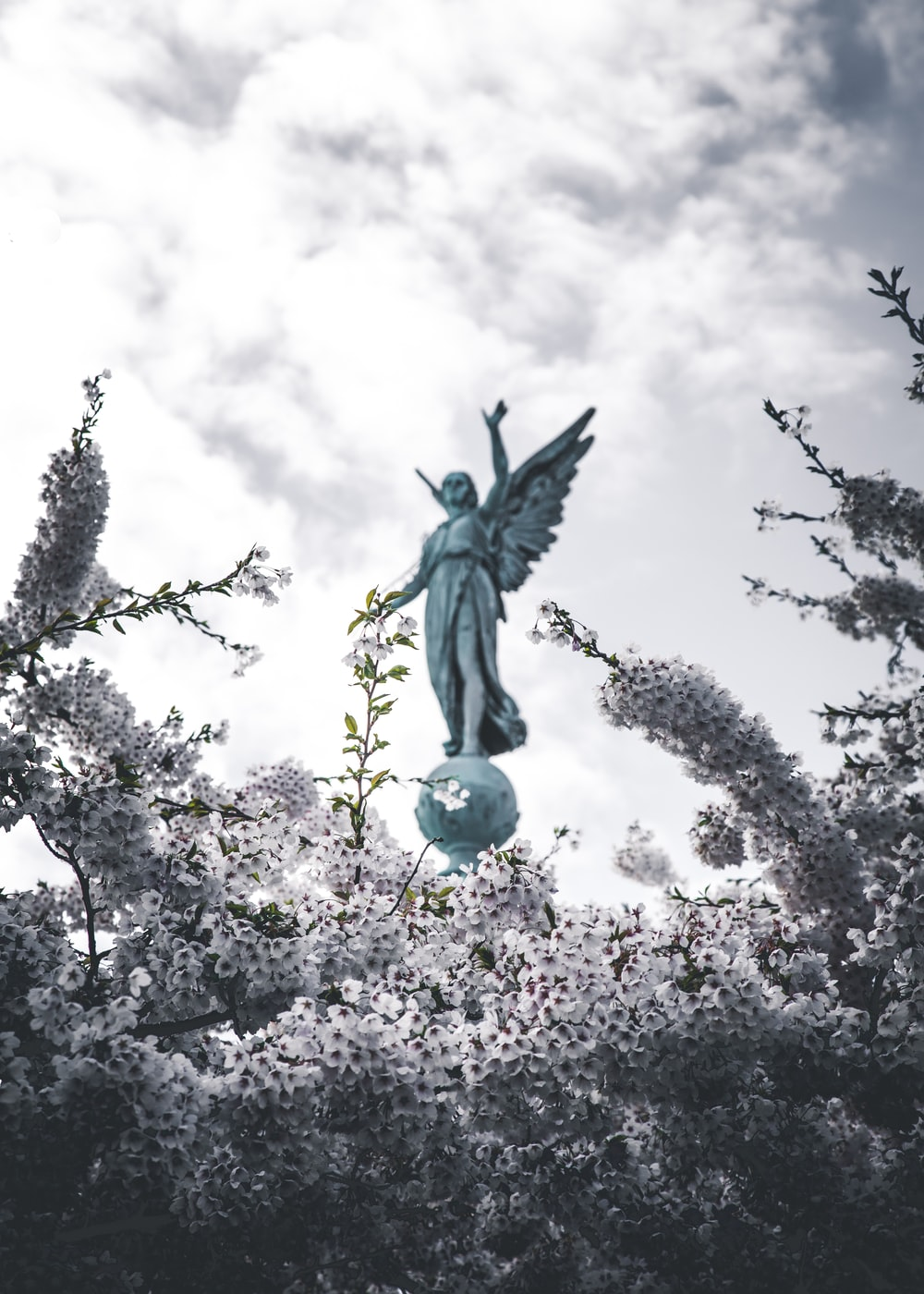 angel green concrete statue low-angle photo