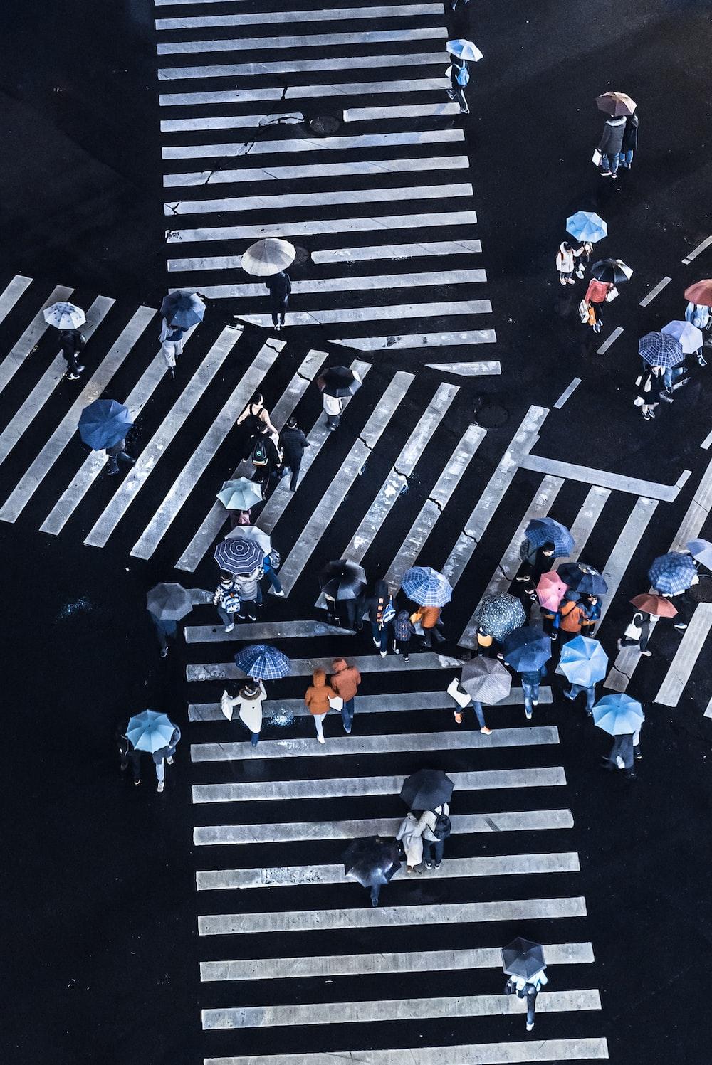 group of people crossing pedestrian lane