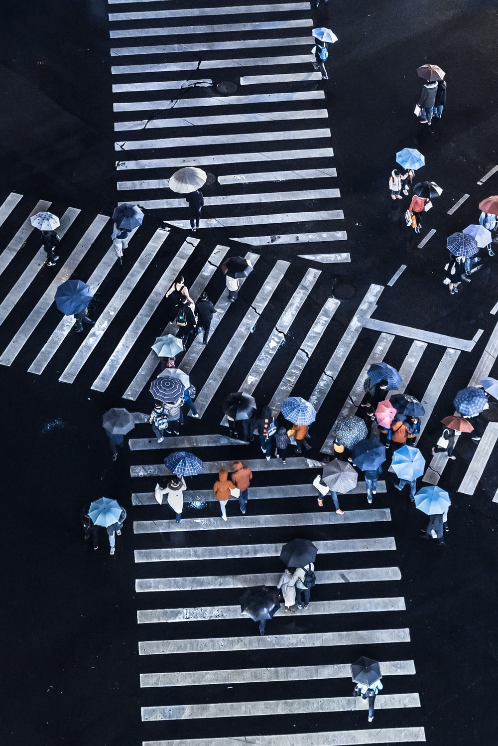 group of people crossing pedestrian lane