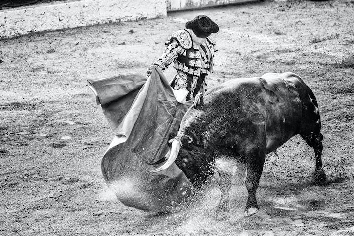 Unorthodox El Matador