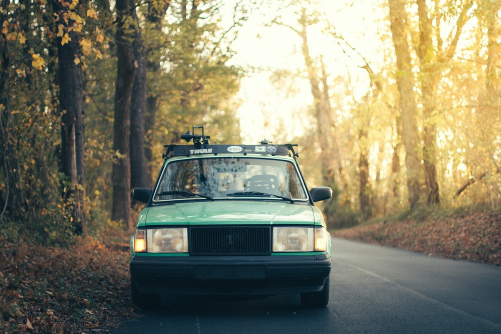 green car surrounded by trees