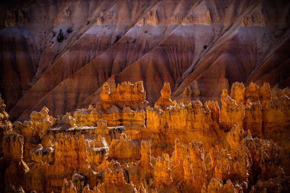 brown mountain photo