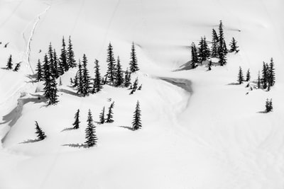 aerial view photography of snow