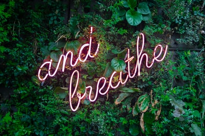 and breathe neon sign on tre wellness zoom background