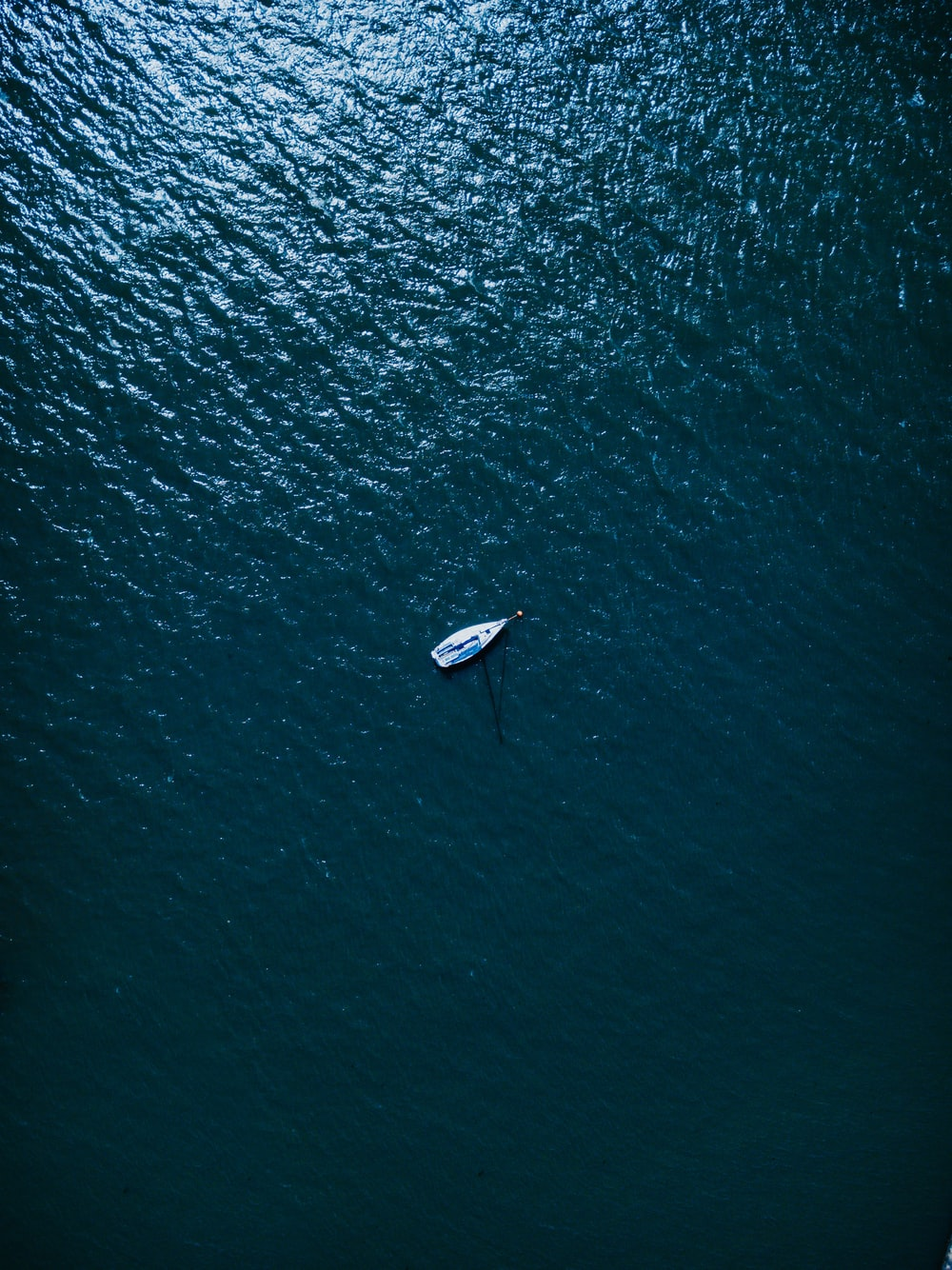 aerial photography of white boat on body of water at daytime
