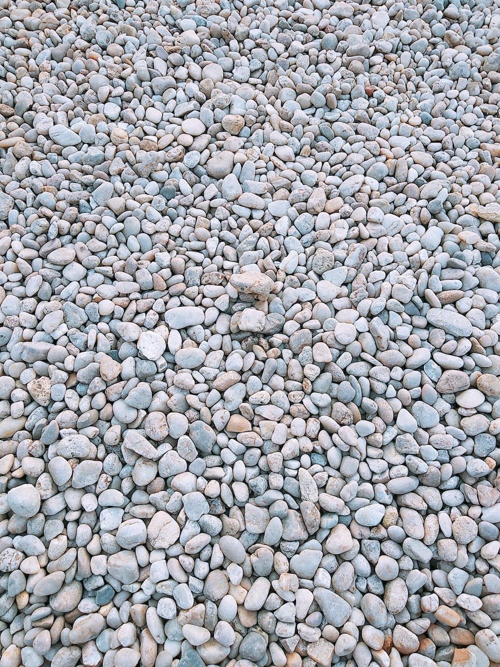 assorted concrete stones