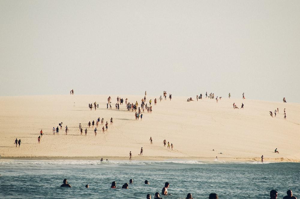 group of people on seashore