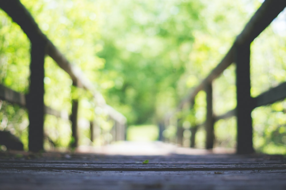 shallow focus photo of brown wooden bridge