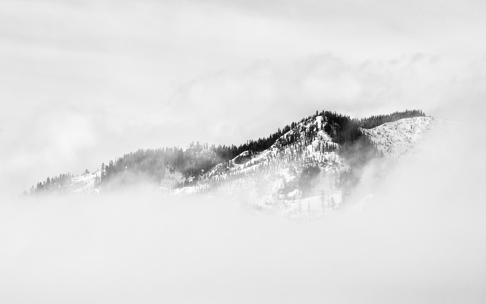 fog covered snow covered mountain