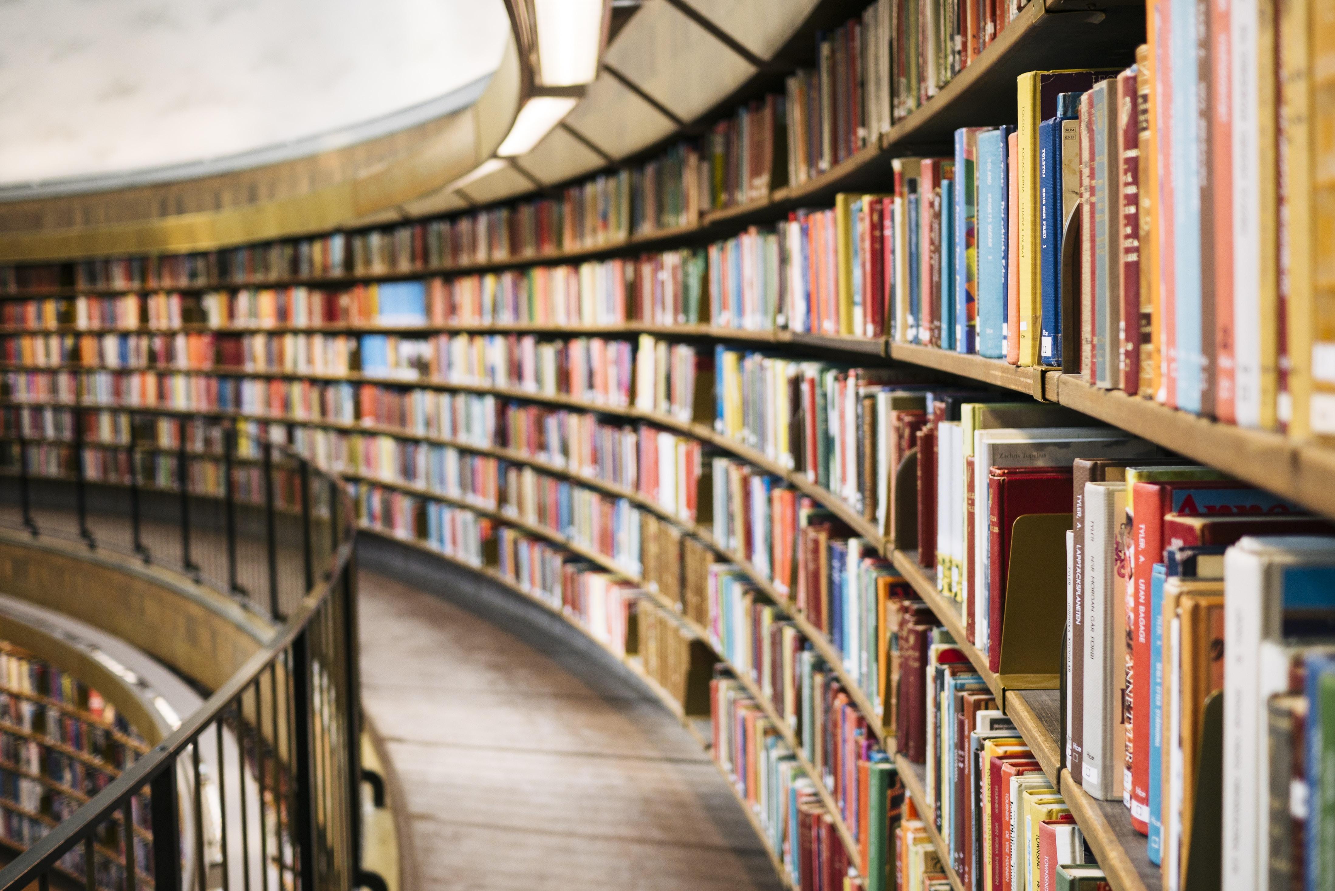 Vom einfachen Buch zur Weltliteratur