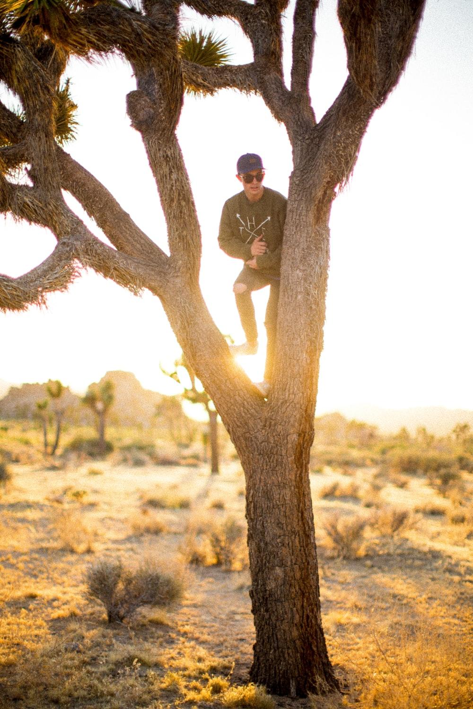 man on tree in desert