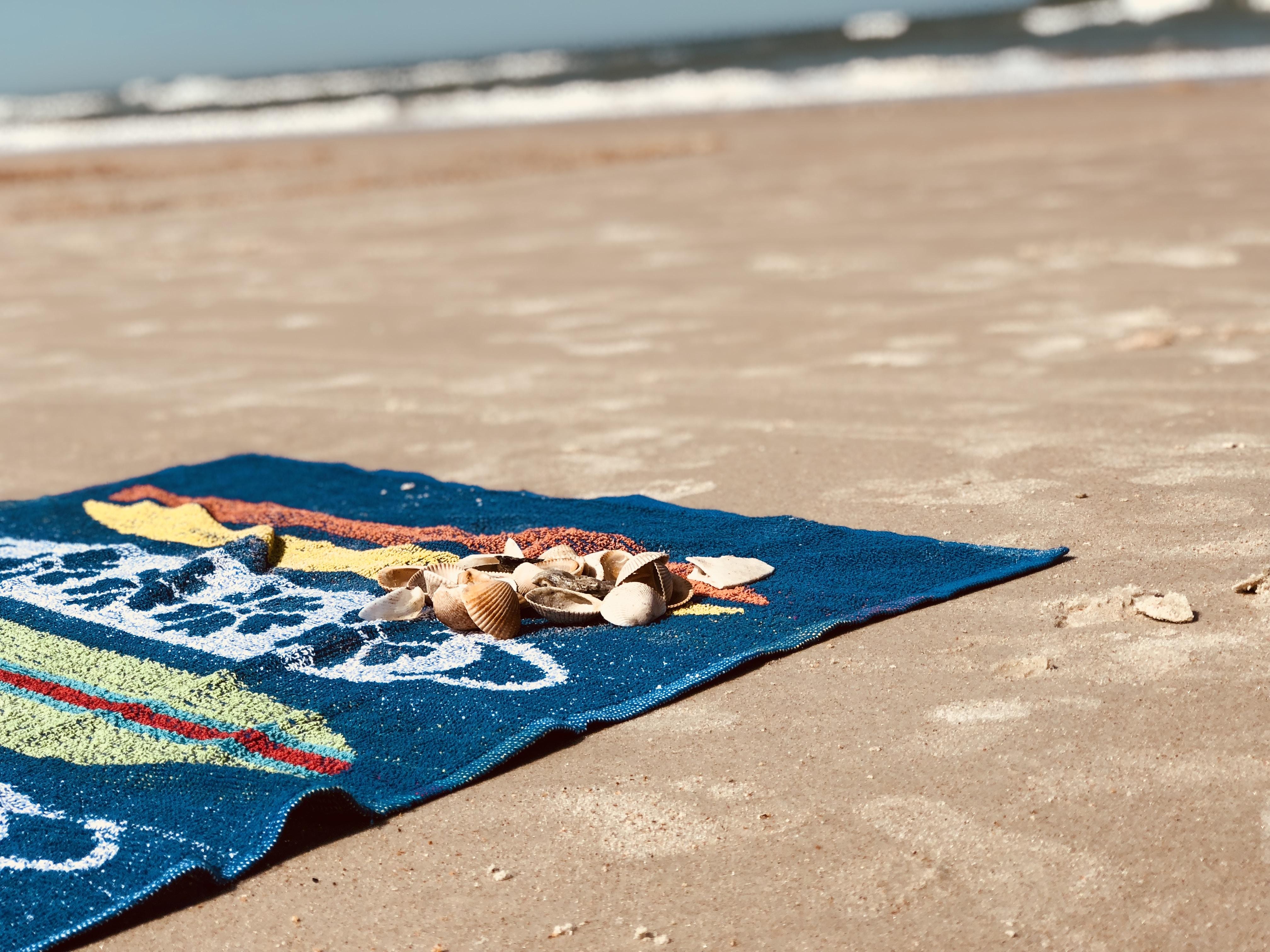 seashell on blue bath towel on shore
