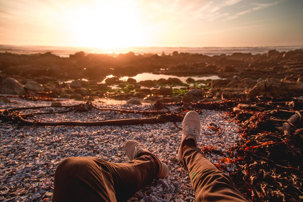 person sitting on seashore during golden hour