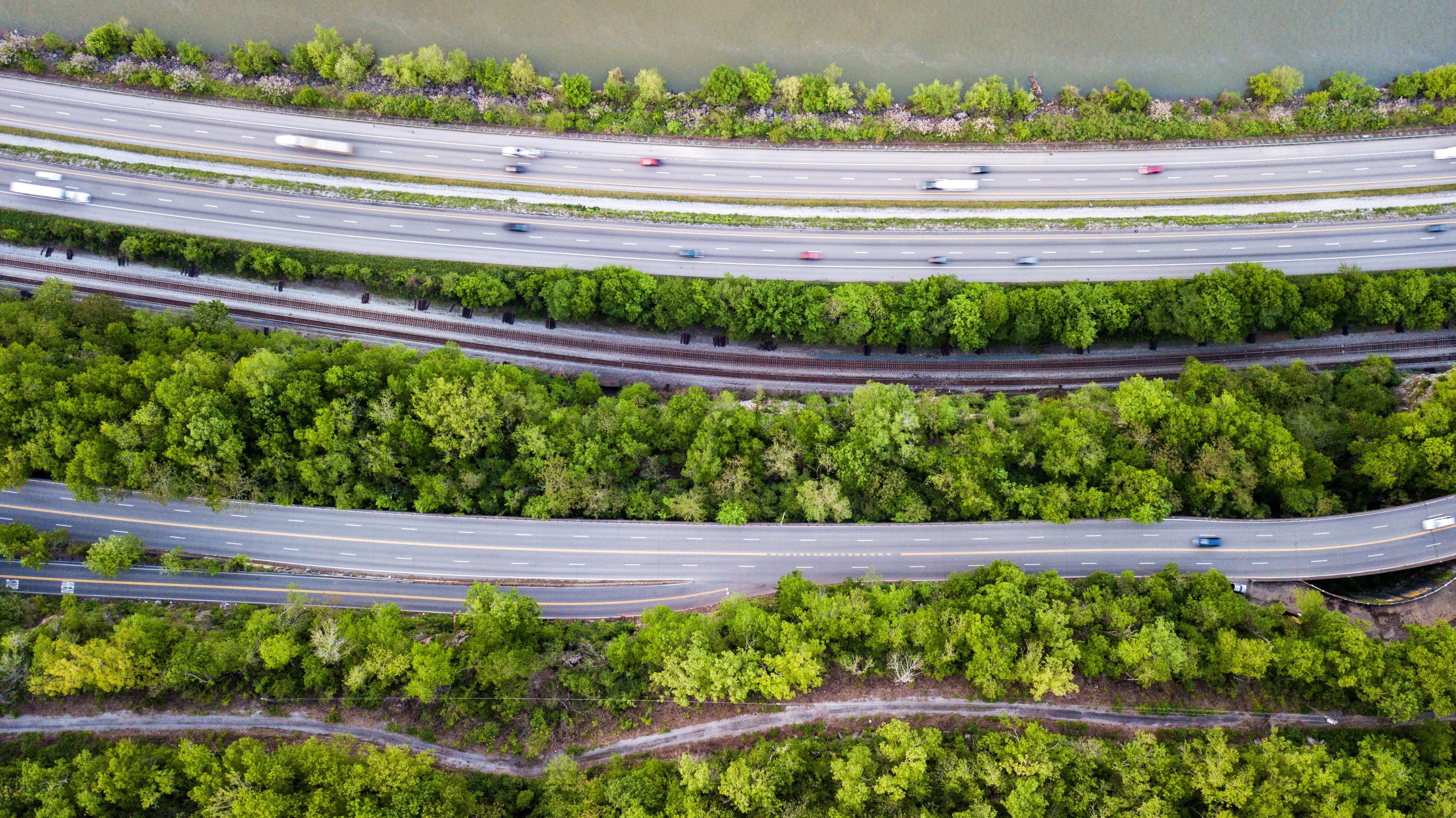highways between forest