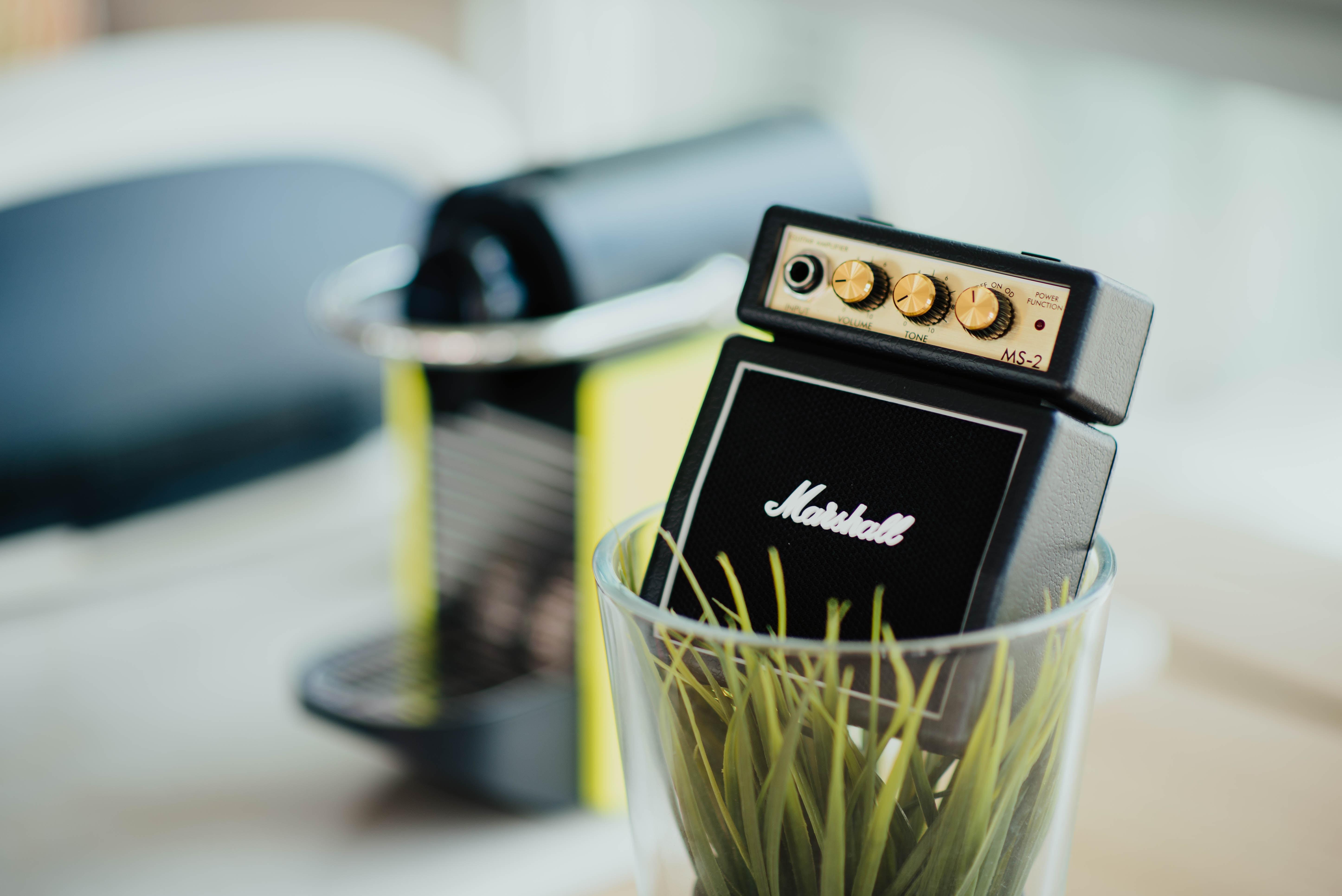 Marshall amplifier in vase