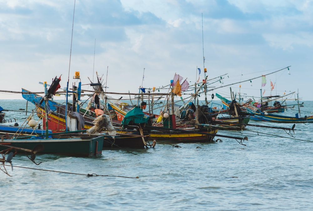 people riding boats on sea during daytime