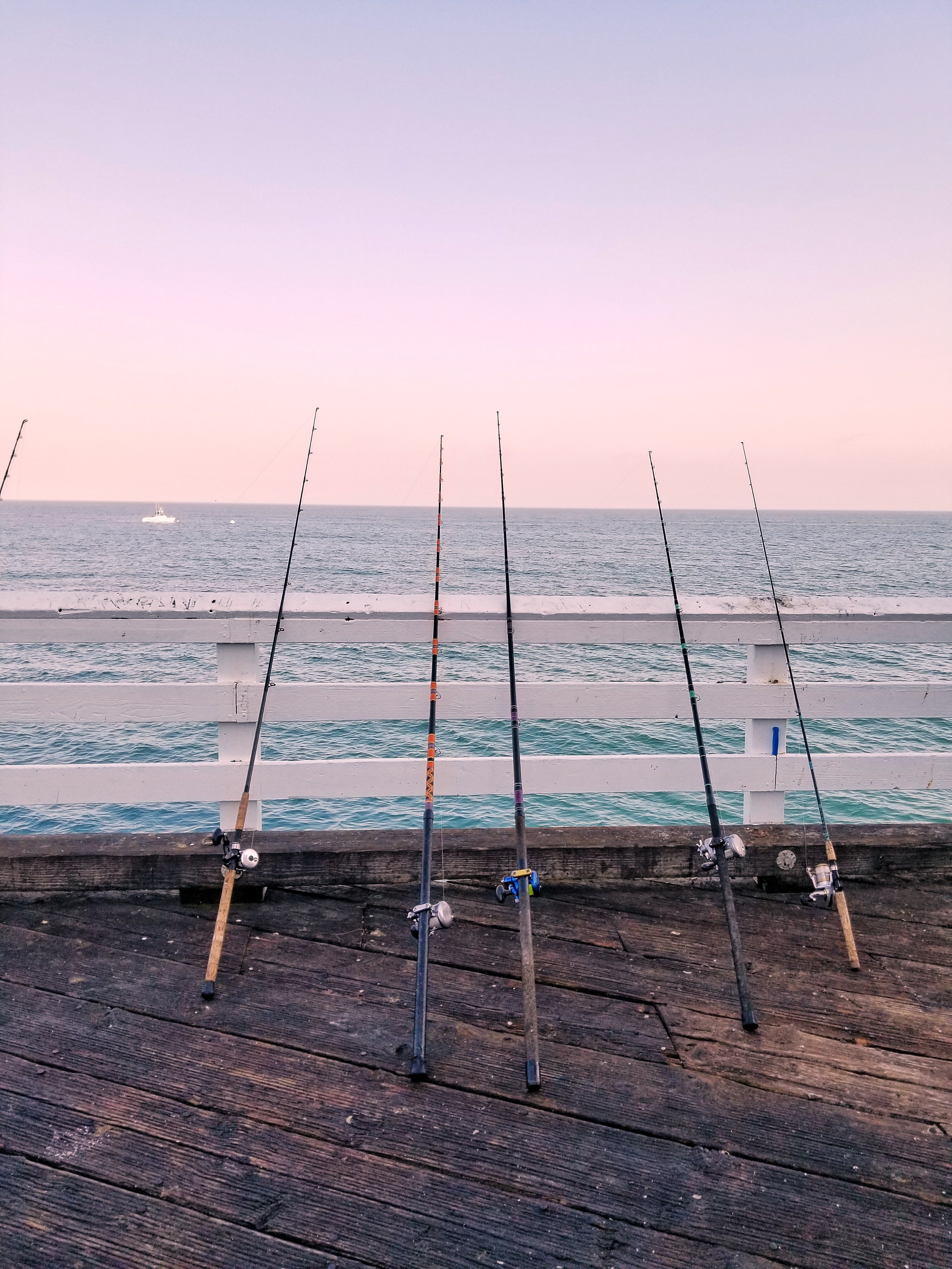 five fishing rods