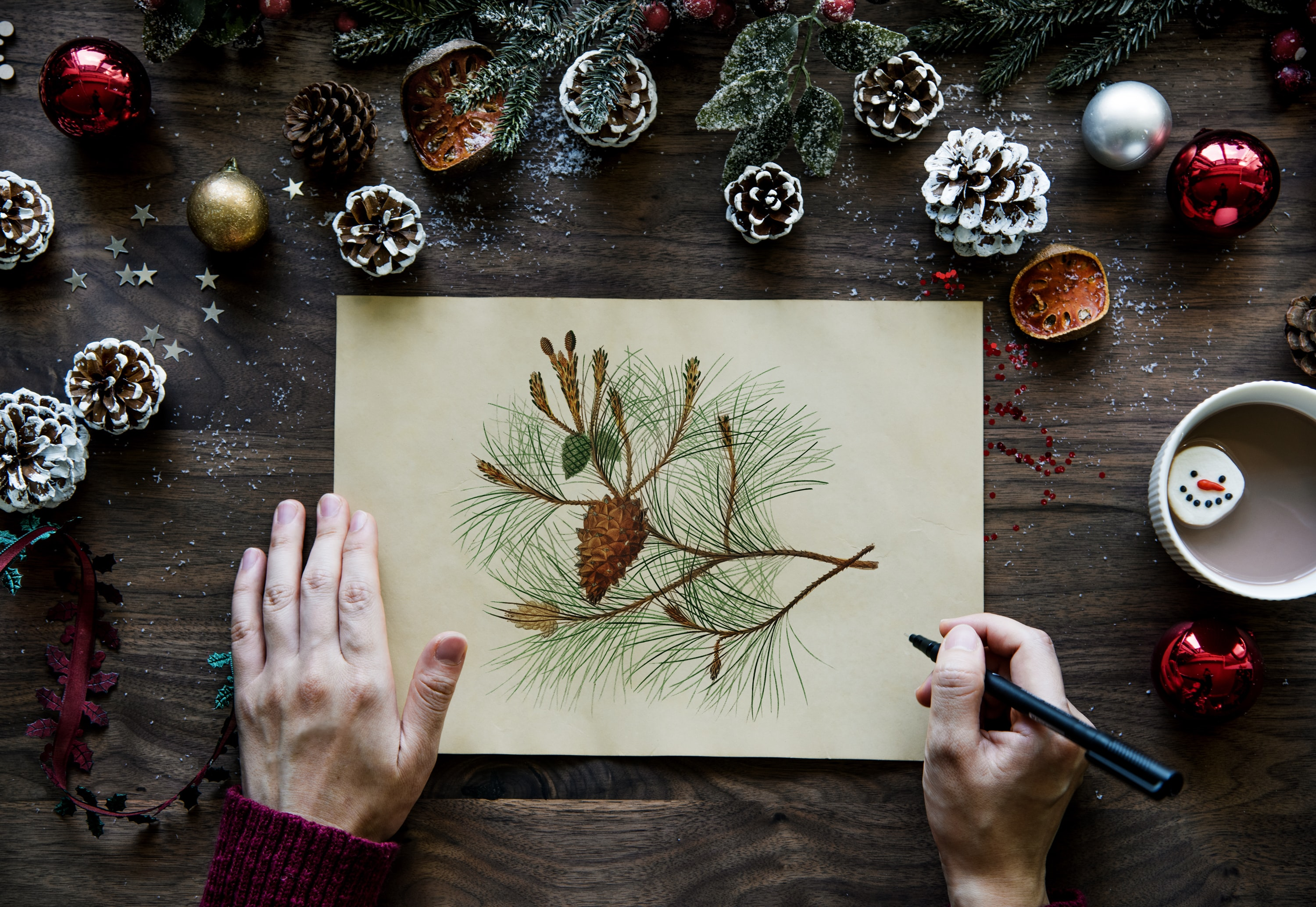 person drawing pinecones