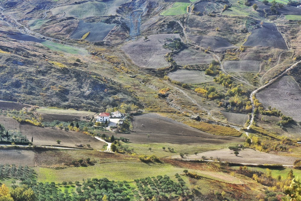 aerial view of green fields during daytime