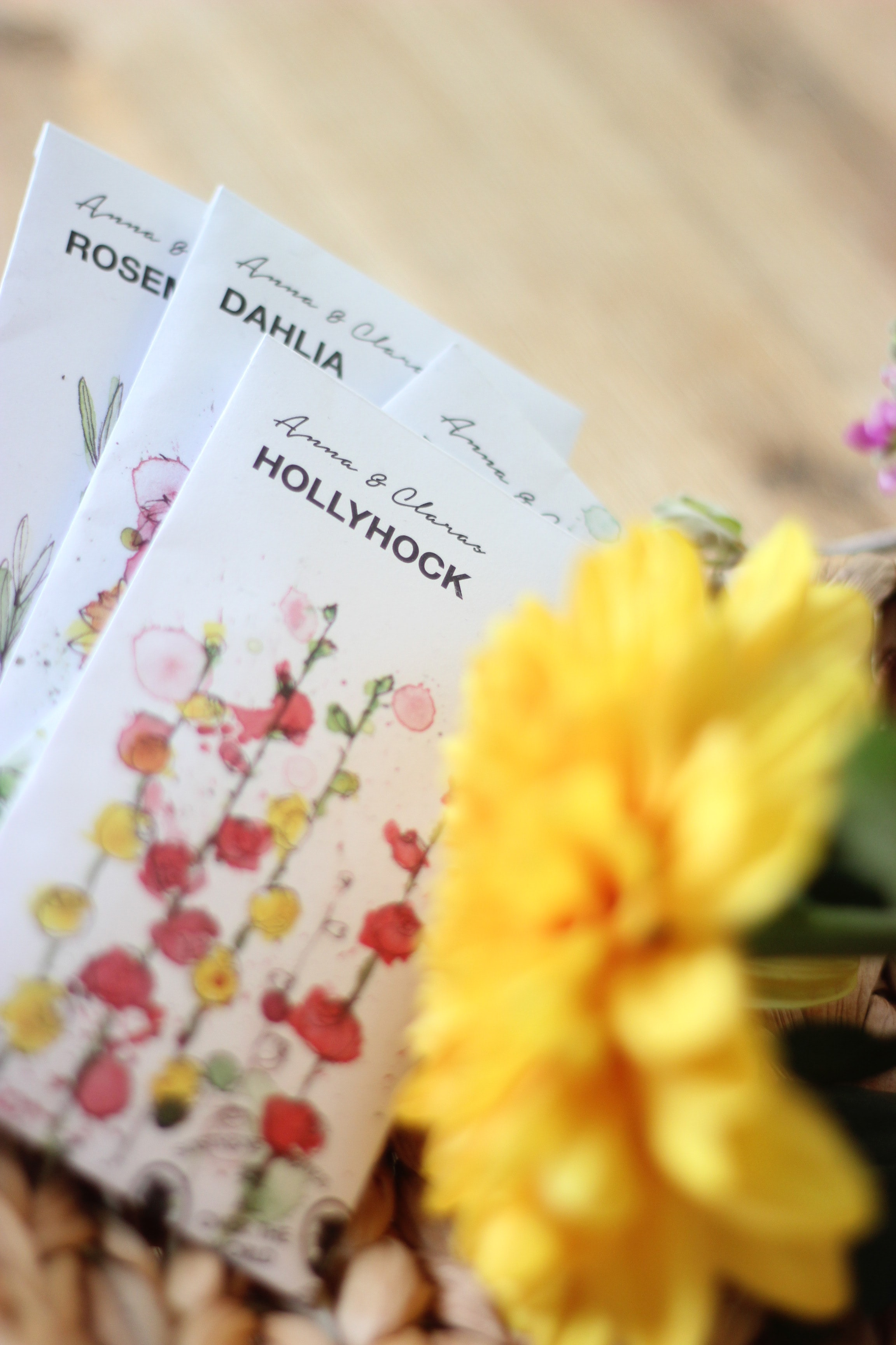 selective focus photography of Hollyhock cards
