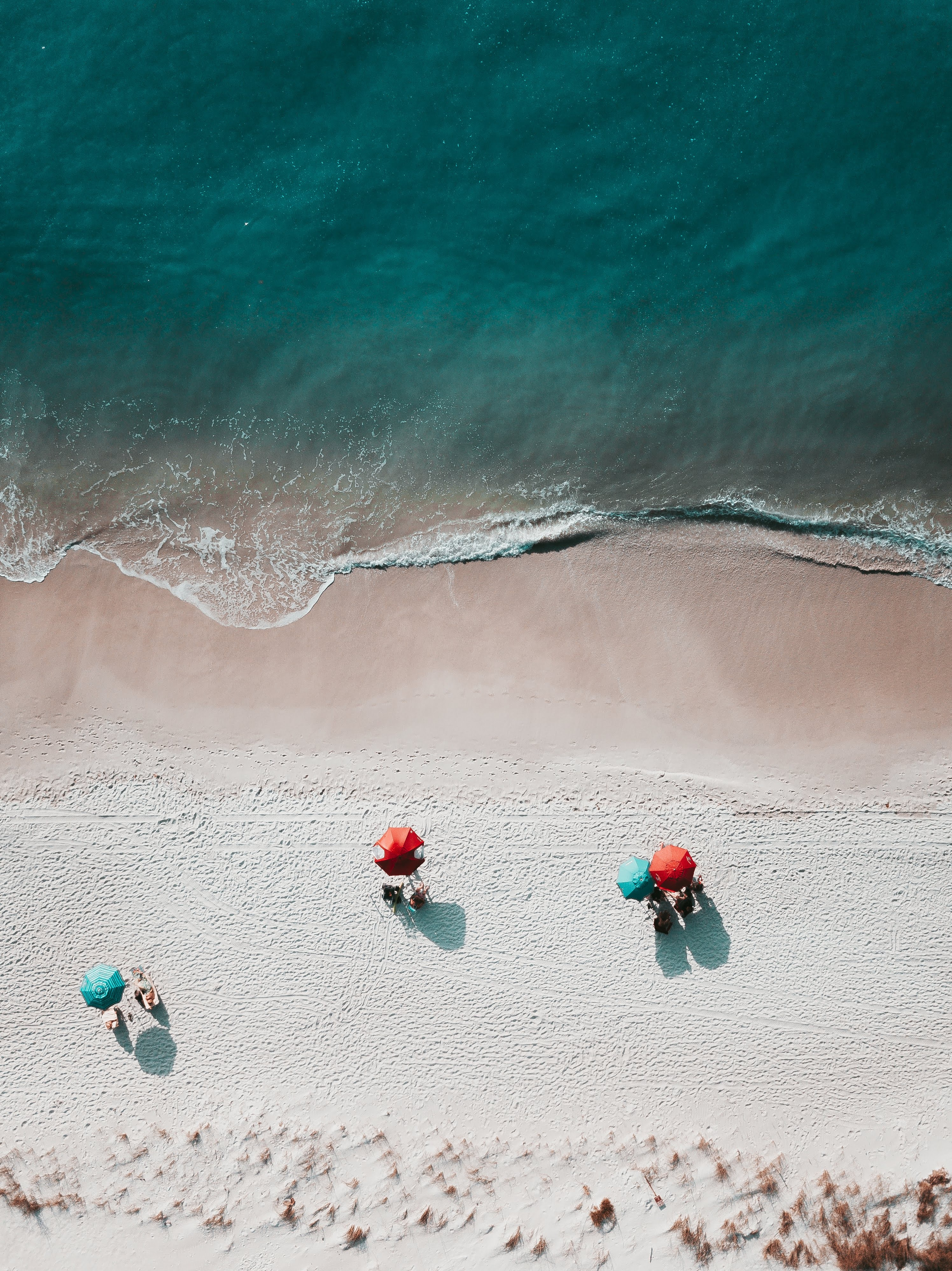 birds eye photography of seashore