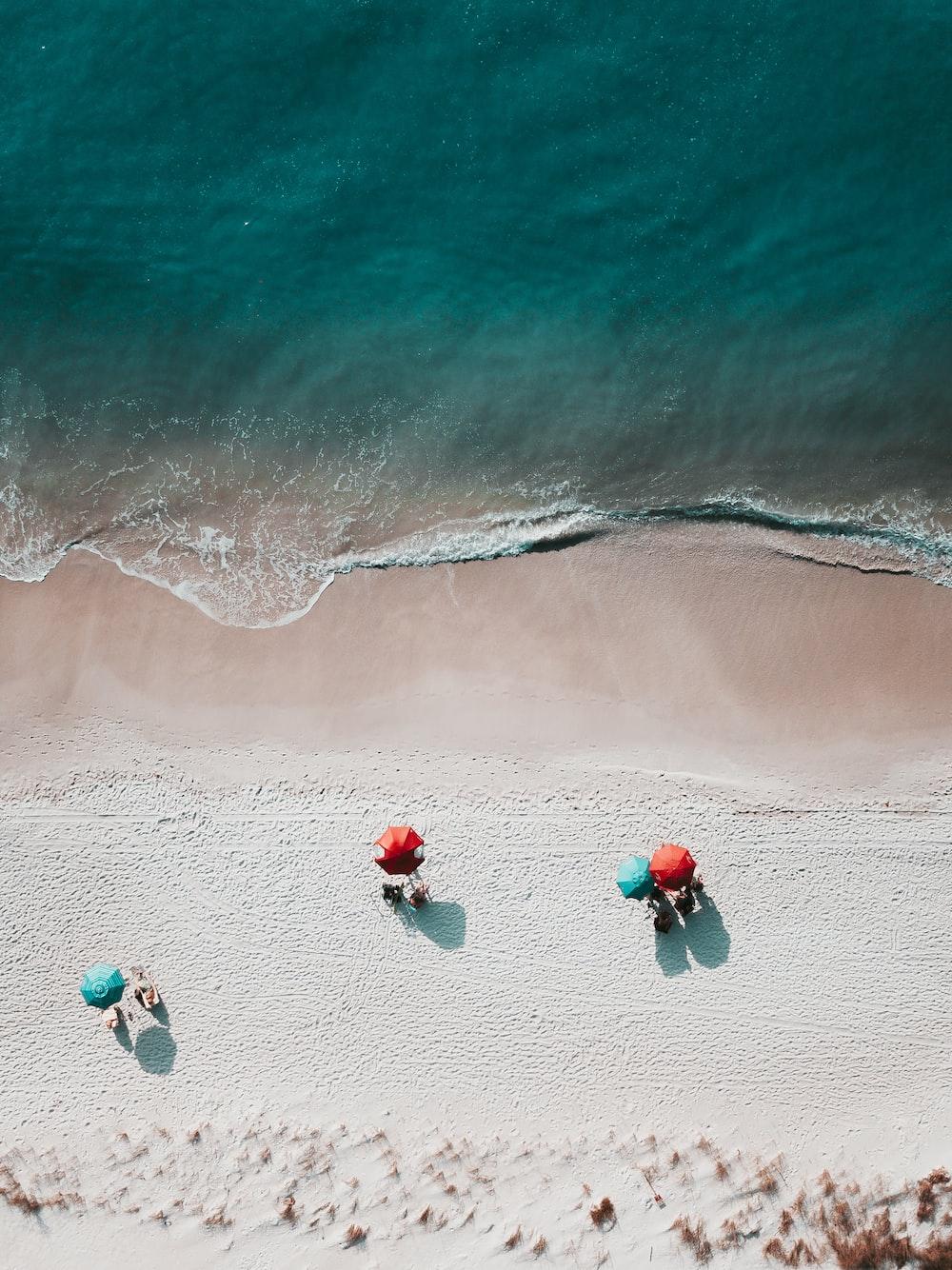 birds eye photography of seashore