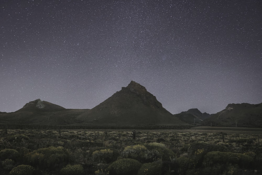 brown mountains under starry sky during nighttime